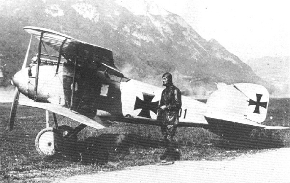"""LOS """"ALBATROS"""" (un avión, una leyenda) Albatr29"""