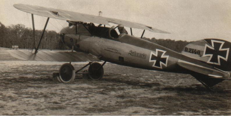 """LOS """"ALBATROS"""" (un avión, una leyenda) Albatr37"""