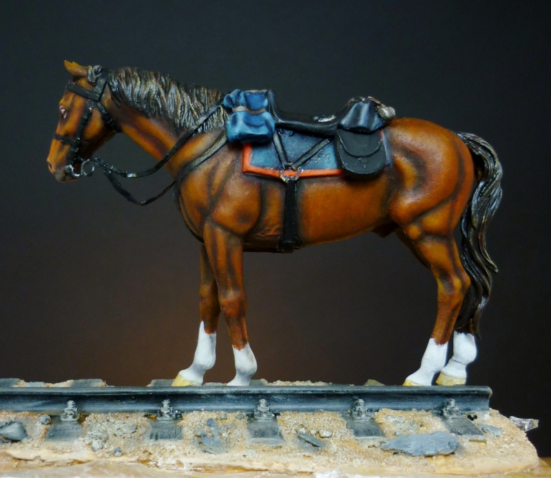 US Cavalry sergent (Romeo models) version BM - Page 2 P1020524