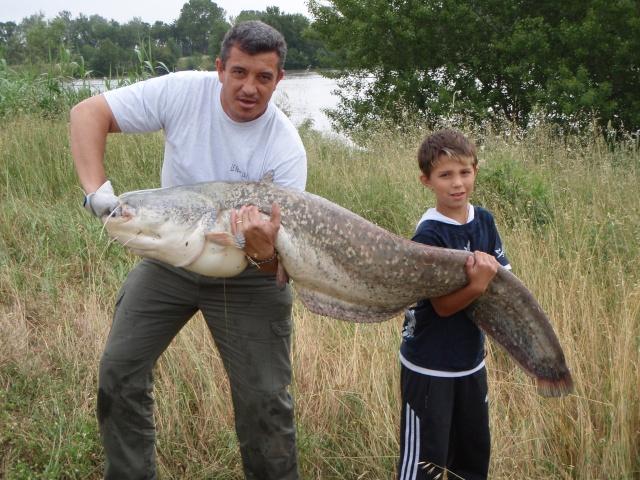 quelques poissons P5310010