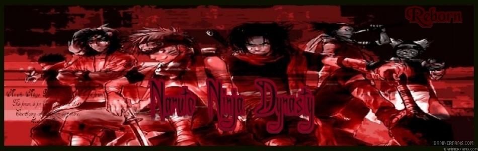 Ninja Dynasty
