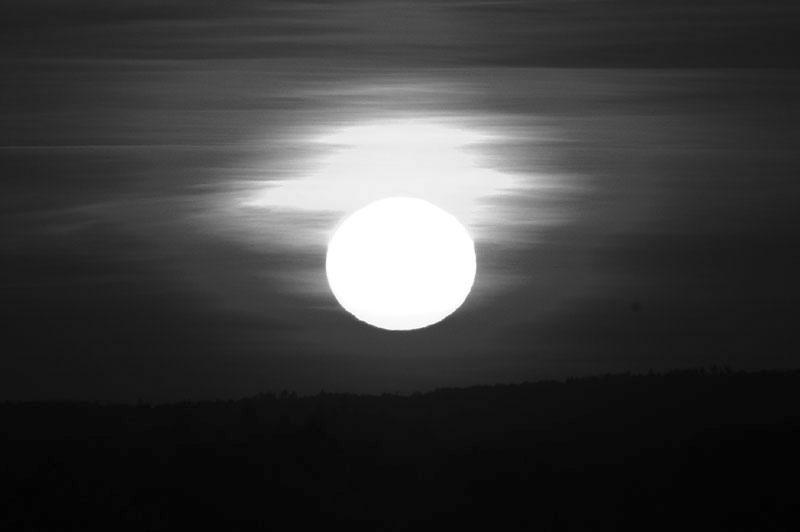 noir et blanc Dsc_1410