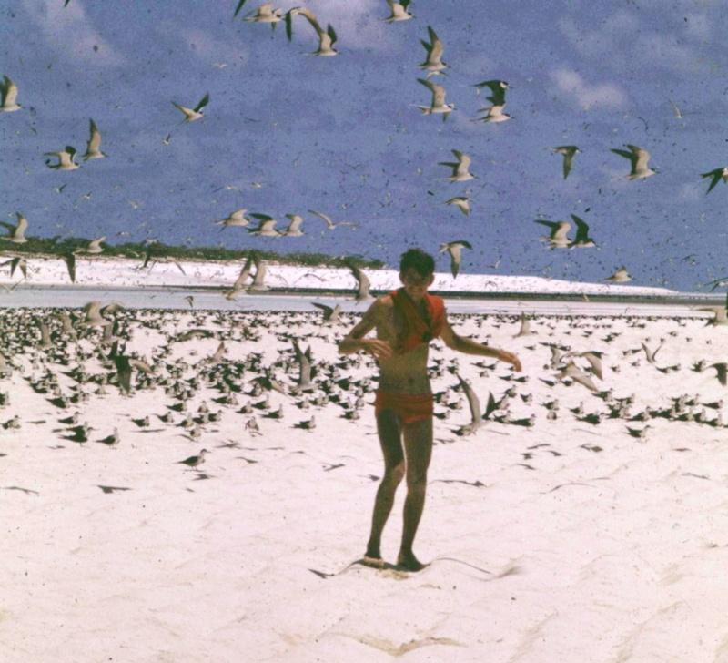 [Campagne] Iles éparses du canal du Mozambique Transp62