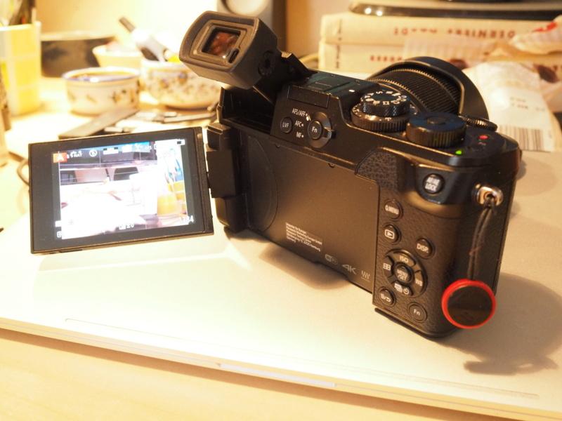 Panasonic GX8 + 12-60mm Pa070010