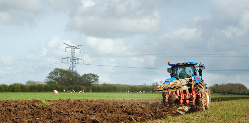 New holland Dsc_4611