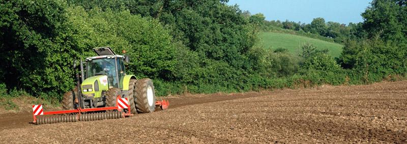 les légumes, du semis à la récolte Travau39