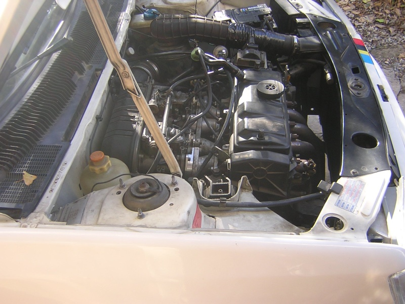 [bencitrouille]  Rallye - 1294 - blanc - 1989 Dscn7218
