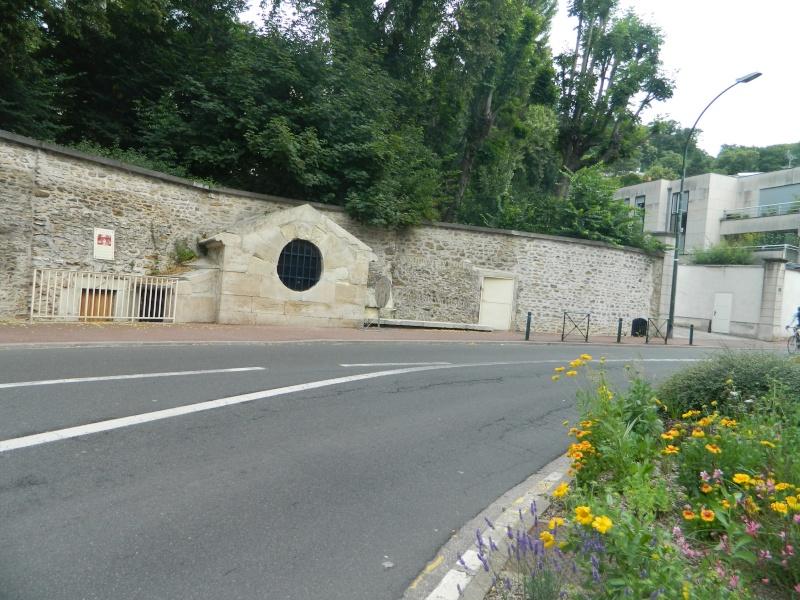 Fontaine du roi, Ville-d'Avray - Page 2 Dscn9819