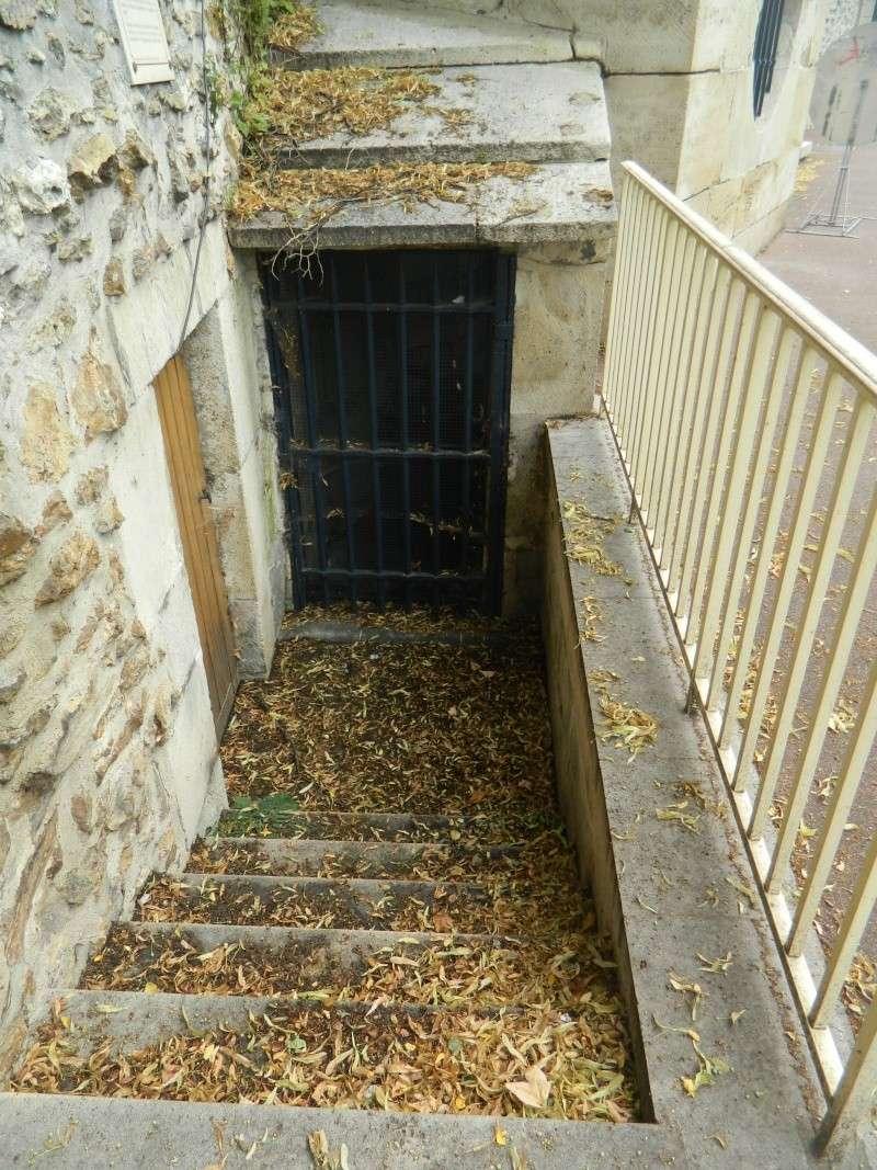 Fontaine du roi, Ville-d'Avray - Page 2 Dscn9821