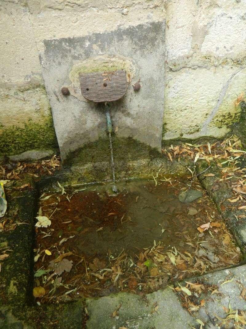 Fontaine du roi, Ville-d'Avray - Page 2 Dscn9823