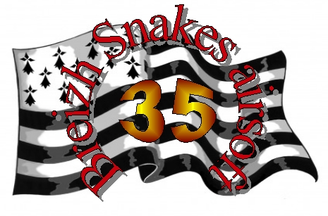BREIZH SNAKES AIRSOFT 35