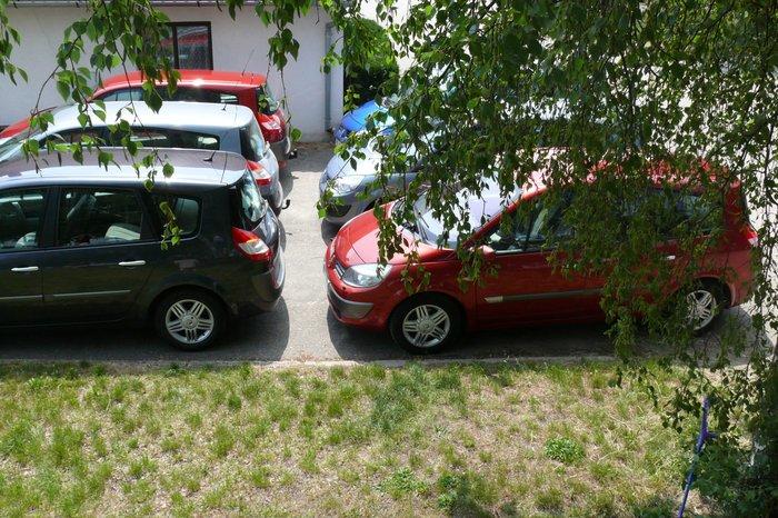 Kladruby nad Labem 01.06.2008 20080611