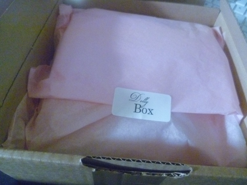 la dollybox de novembre P1040327