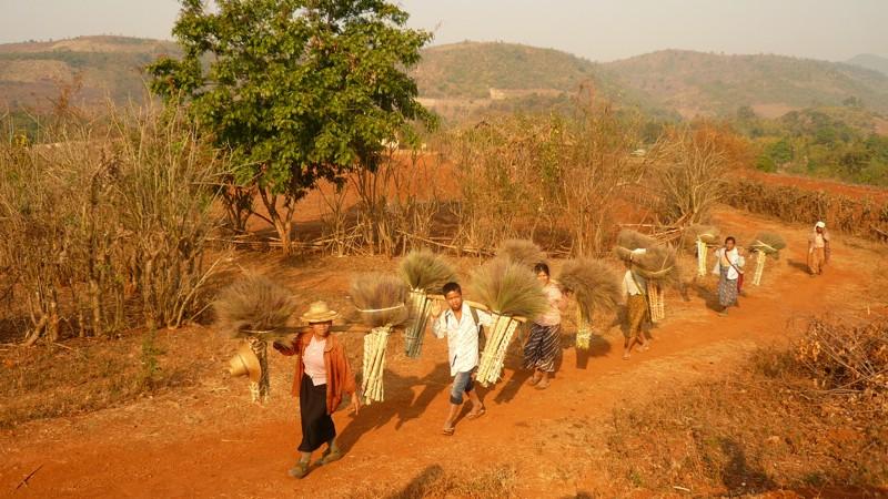 La Birmanie, à savoir ... - Page 3 P1010610