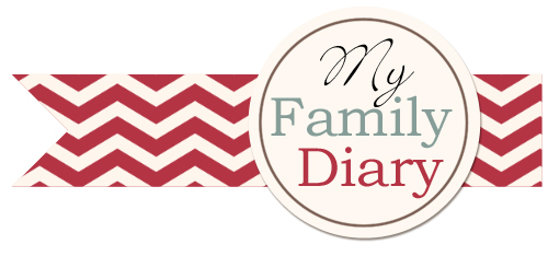 fonctionnement de la Galerie Family Diary Bannia11