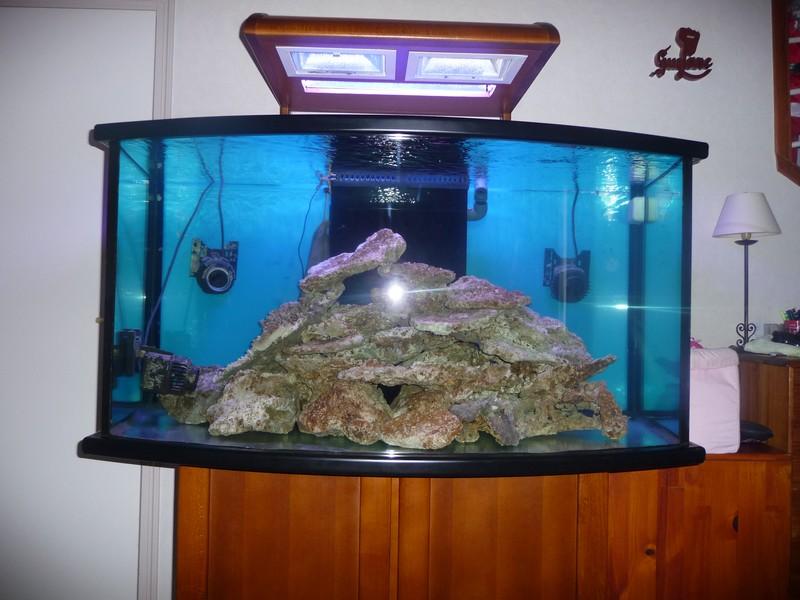Aquarium atelier de marianne beluga 550 litres P1040911