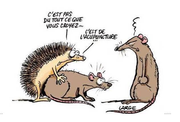 Images Comiques - Page 12 Att00010