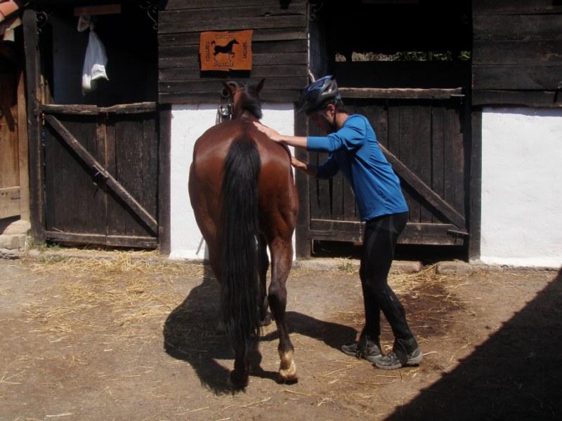 Prueba práctica en Aravalle P1010026