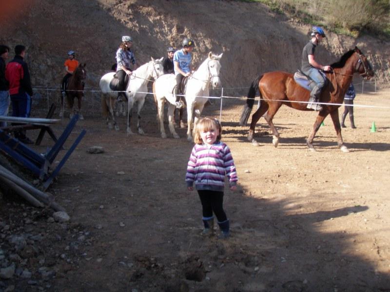 Aravalle 2012 P3220015