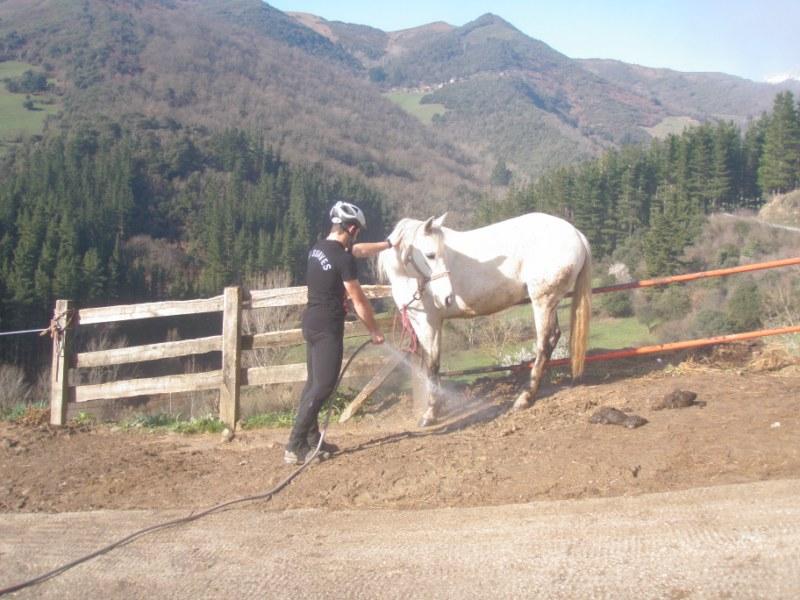 Aravalle 2012 P3220018