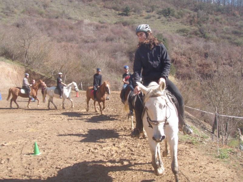 Aravalle 2012 P3220028