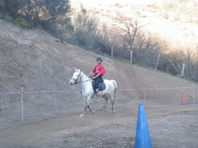 Aravalle 2012 P3220113