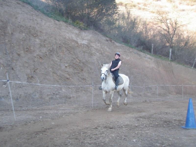 Aravalle 2012 P3220114