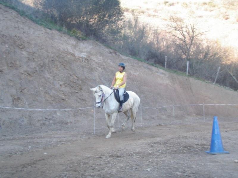 Aravalle 2012 P3220116