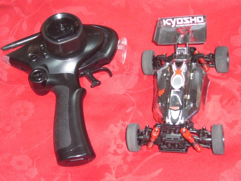 La Greg MiniZ Buggy P1090811