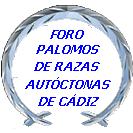 PALOMOS DE HEMBREO Logofo11