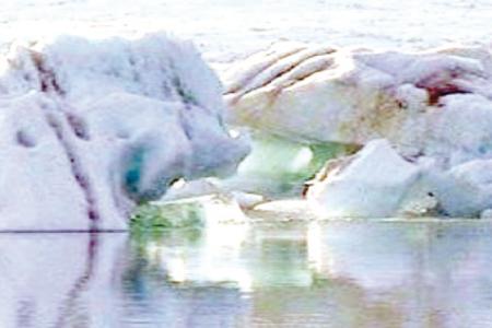 رحلة جنونية تحت الجليد القطبي  B82b6911