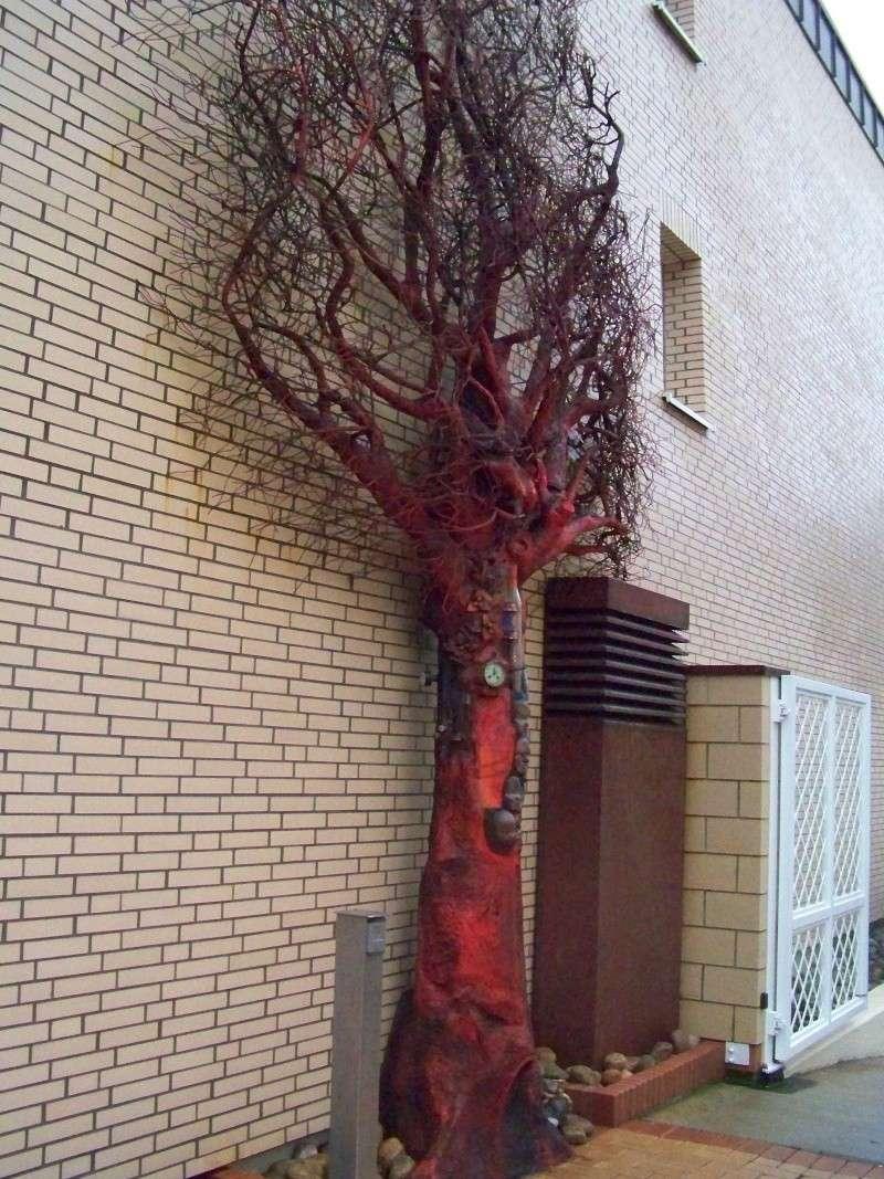 Fotoprojekt - Bäume - Seite 9 100_1410