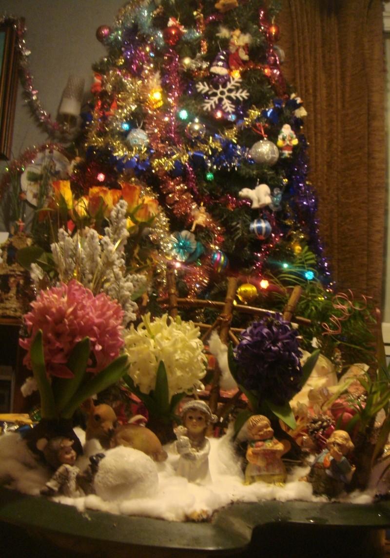 joyeux Noel & bonne année  PAPA NOEL EST PASSE ICI ! - Page 3 Noel_210