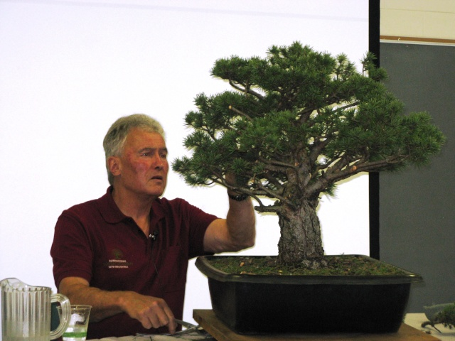 Walter Pall at the Carolina Bonsai Expo Pictur14