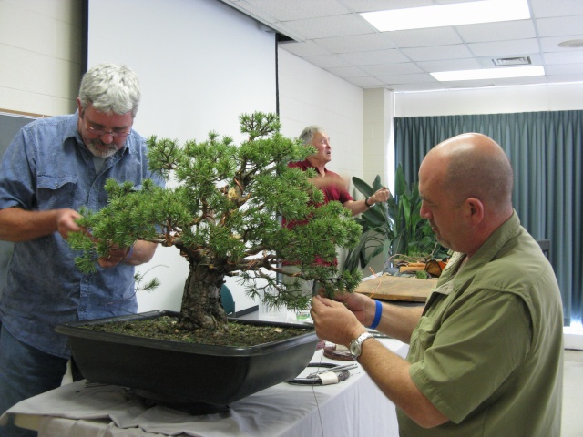 Walter Pall at the Carolina Bonsai Expo Pictur15