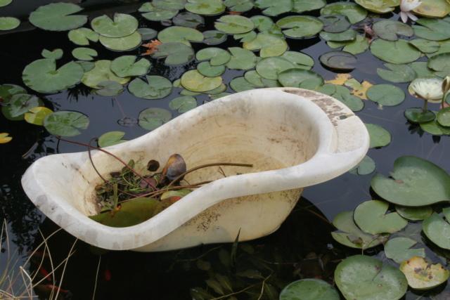 Votre aide pour un installer bassin dans pays tres chaud Img_1710