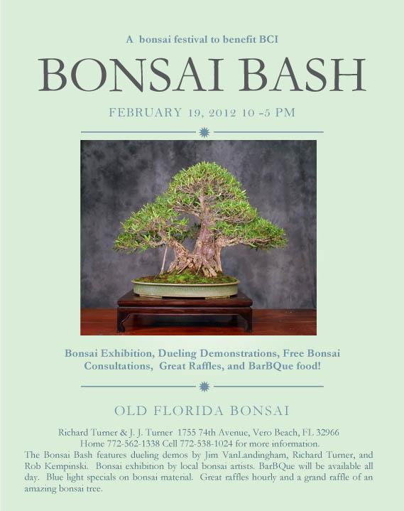 Bonsai Bash in Florida  Bonsai15