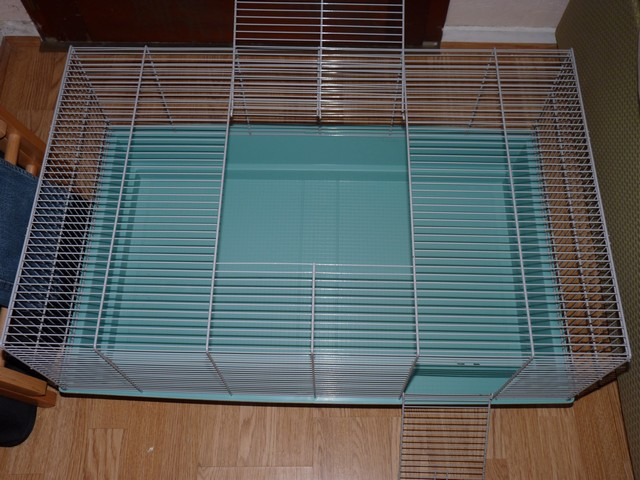 cage freddy 2 et cages mary P1250019