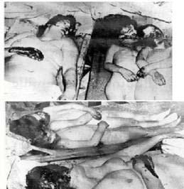 19 Mars 1962 :  CESSEZ LE FEU...ou la victoire du FLN 1310