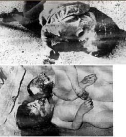 19 Mars 1962 :  CESSEZ LE FEU...ou la victoire du FLN 1410