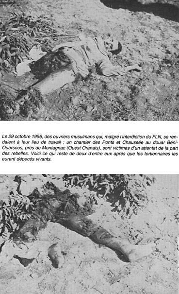 19 Mars 1962 :  CESSEZ LE FEU...ou la victoire du FLN 1810