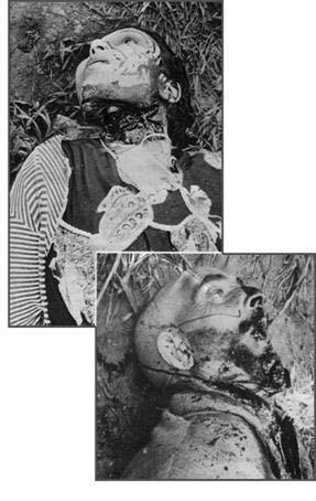 19 Mars 1962 :  CESSEZ LE FEU...ou la victoire du FLN 2210