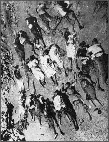 19 Mars 1962 :  CESSEZ LE FEU...ou la victoire du FLN 2310