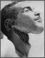 19 Mars 1962 :  CESSEZ LE FEU...ou la victoire du FLN 310