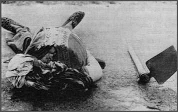 19 Mars 1962 :  CESSEZ LE FEU...ou la victoire du FLN 410