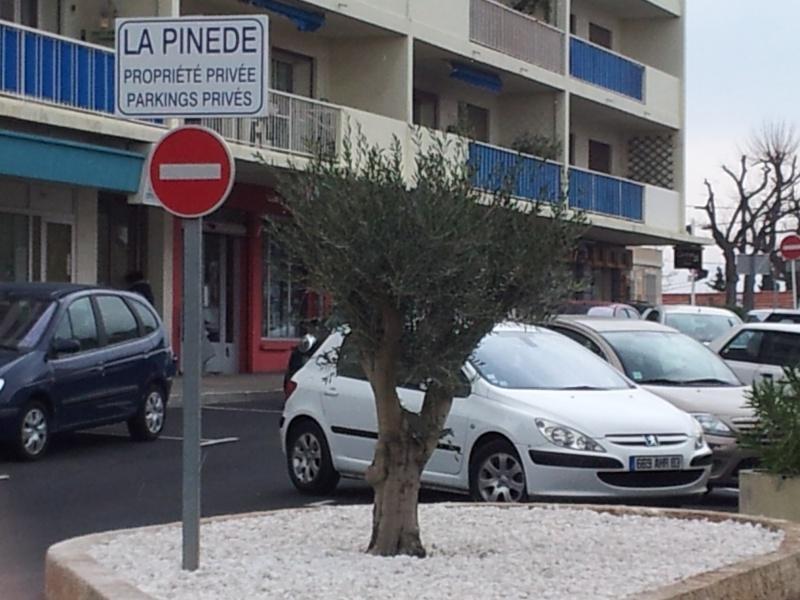 ENTREE PRINCIPALE DE LA PINEDE 20120315