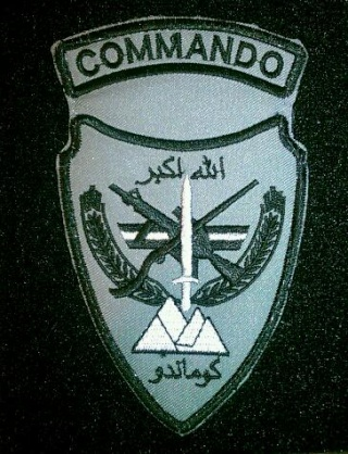 Afghan National Army Commando Patches - Page 4 20120611