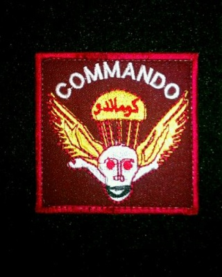 Afghan National Army Commando Patches - Page 4 20120612