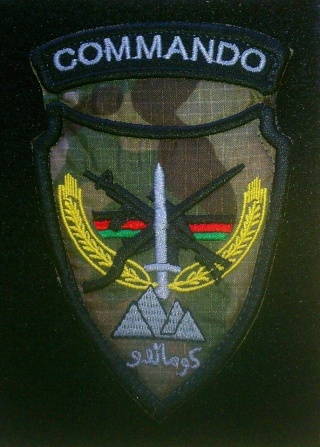 Afghan National Army Commando Patches - Page 4 20121116