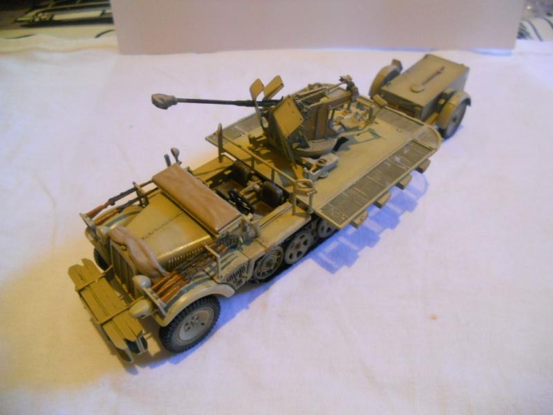 Sdkfz - 10/4 with flak (peinture en cours) Dscn7119